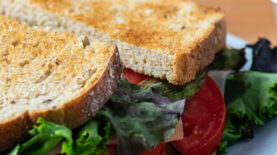 digital-sandwich-Header