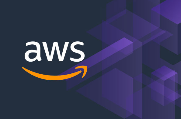 AWS Executive Education in Digital Transformation for Public Sector